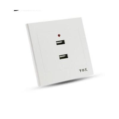 二位36V转5V低压USB插座 两位USB插座 二孔2USB手机充电插座