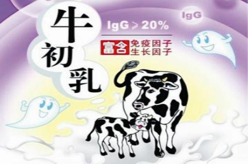 牛初乳十大品牌 十大牛初乳品牌排行榜 牛初乳哪个品牌好?