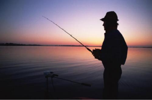 鱼饵十大品牌,用哪种鱼饵钓鱼最容易?