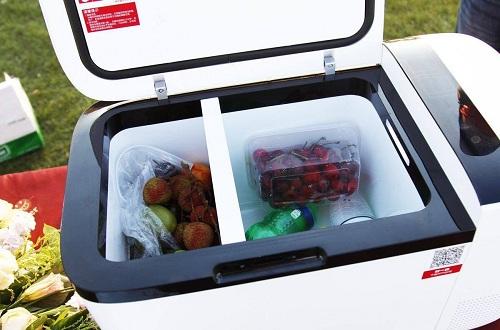 车载冰箱十大品牌,什么牌子的车载冰箱比较好