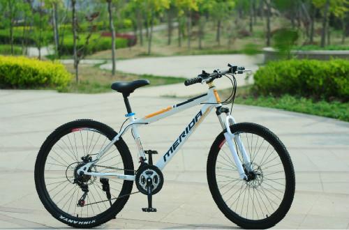 自行车十大品牌,哪种品牌的自行车骑着最舒服