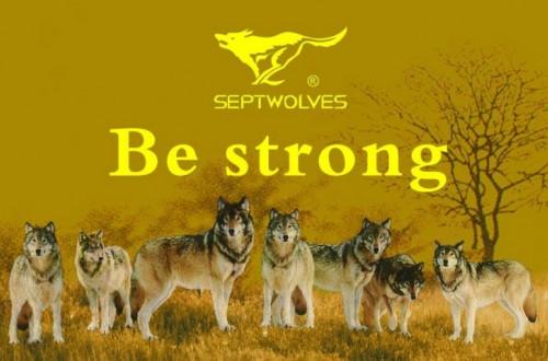 福建七匹狼品牌升级 坚定目标,延续品格