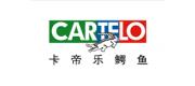 CARTELO卡帝乐鳄鱼品牌